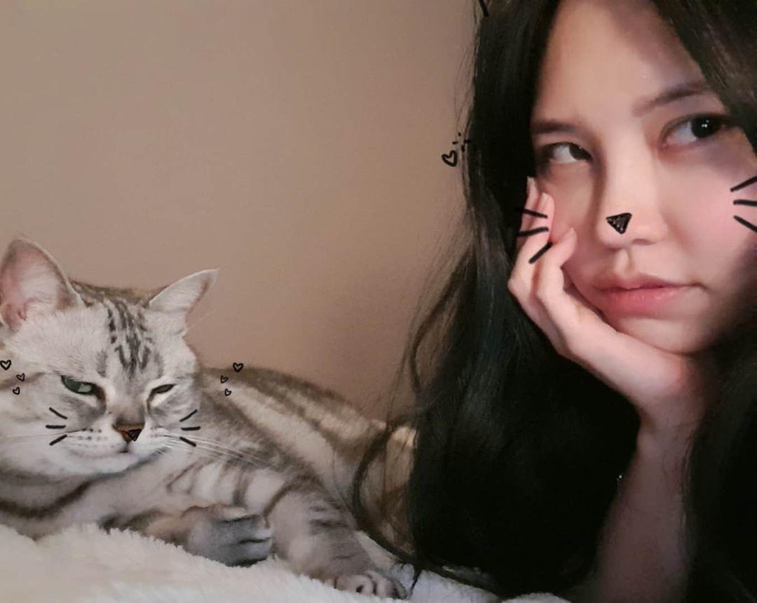 Nama Kucing Betina dan Laki2 Beserta Artinya
